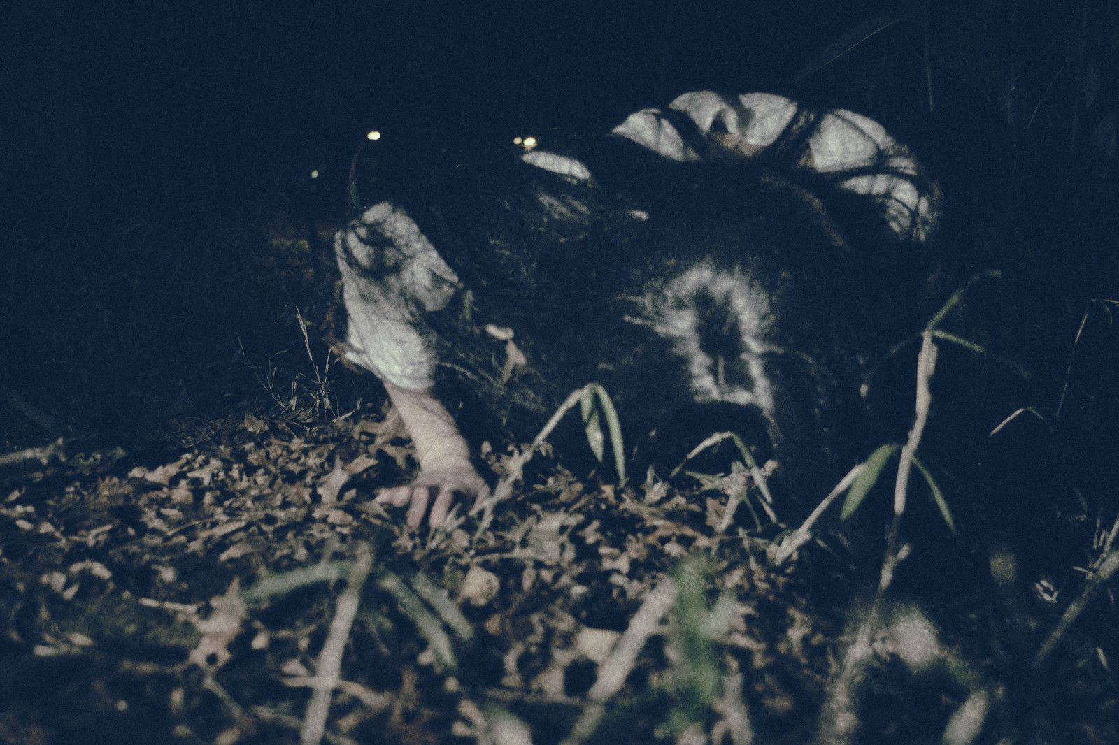 「暗闇から這いつくばり向かってくる女性の怨念」の写真[モデル:緋真煉]