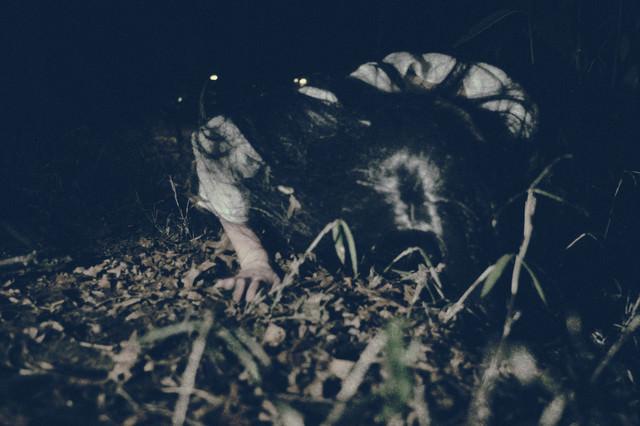 暗闇から這いつくばり向かってくる女性の怨念の写真