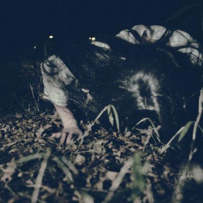 「暗闇から這いつくばり向かってくる女性の怨念」の写真素材