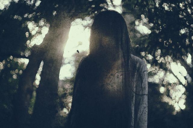 暗い森の中で呪いをかけられたの写真