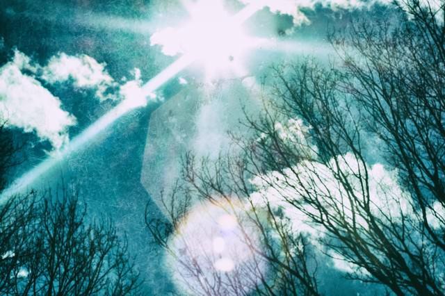 逆光と空の写真