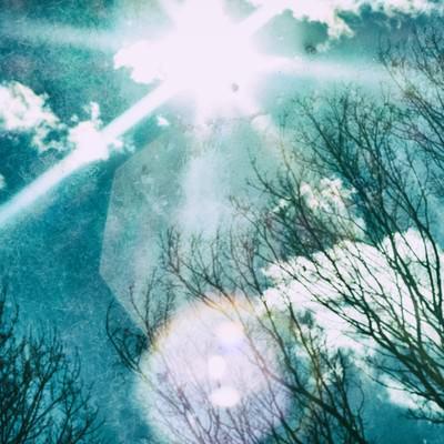 「逆光と空」の写真素材
