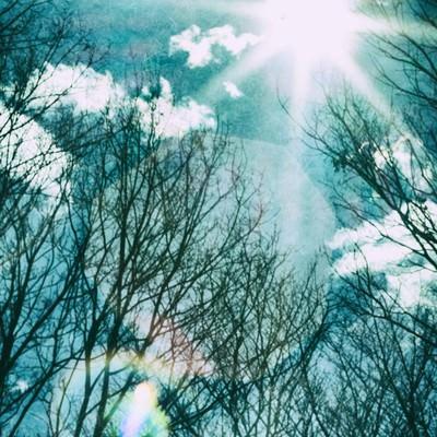 「逆光の星芒」の写真素材