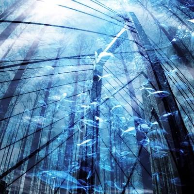 「沈没都市(フォトモンタージュ)」の写真素材