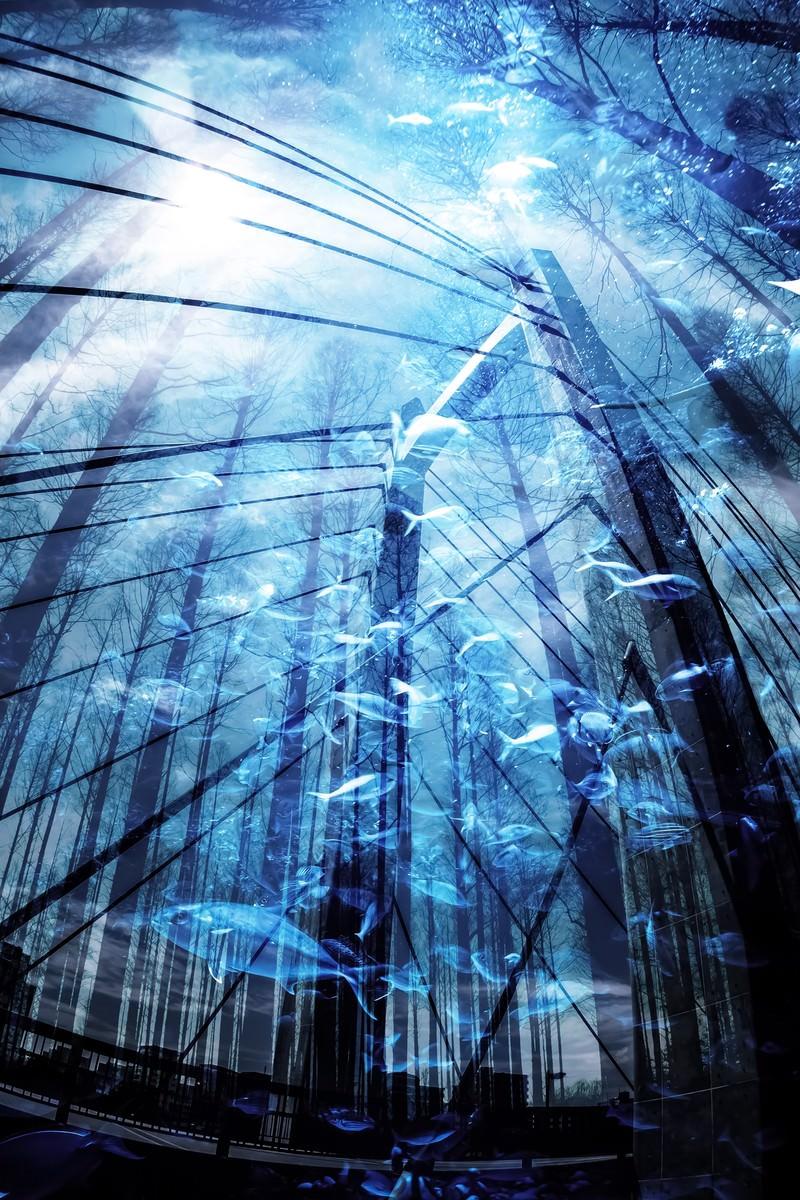 「沈没都市(フォトモンタージュ)」の写真