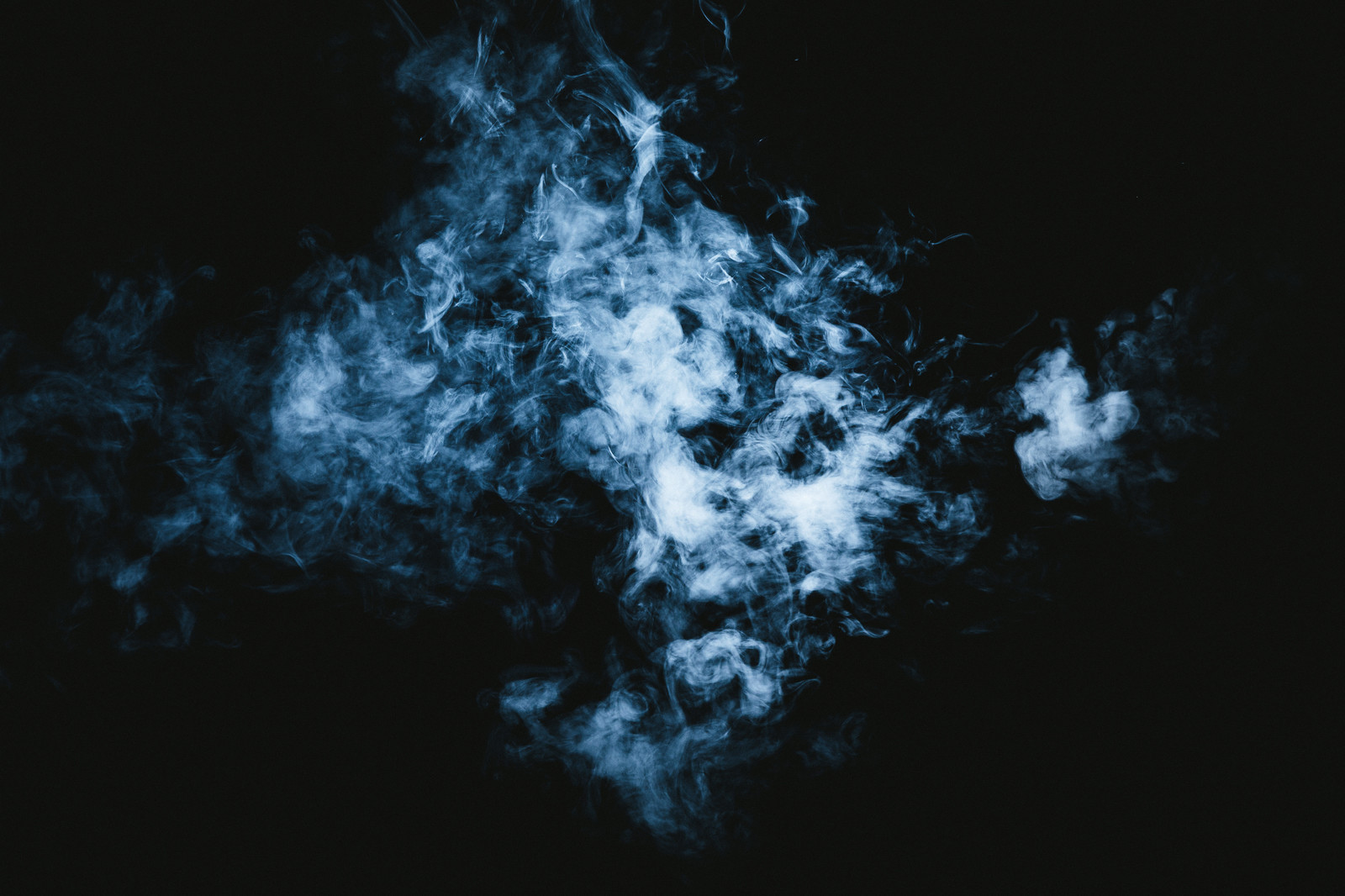 「化け猫に見える煙」の写真