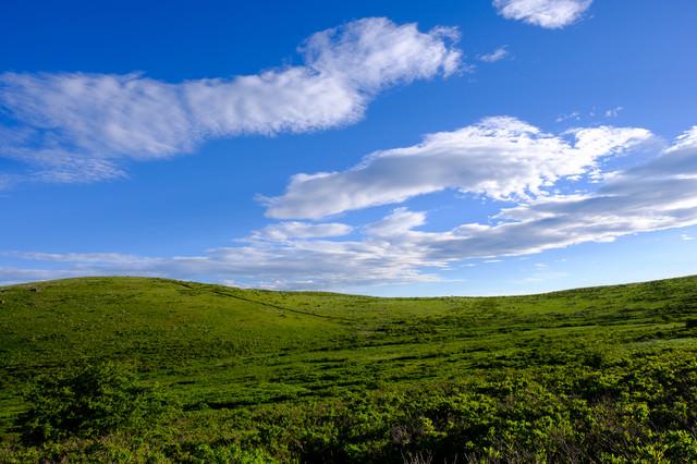 デスクトップ画面にしたくなる霧ヶ峰高原の写真