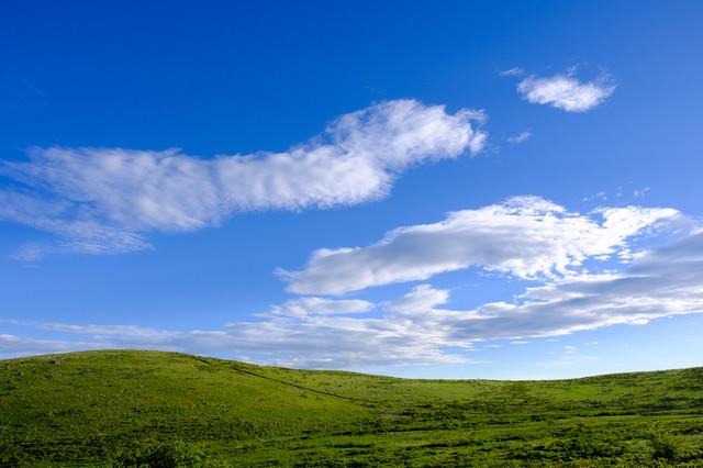 背景・壁紙にしたくなる高原の様子の写真