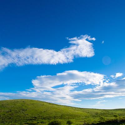 青空と霧ヶ峰高原の写真