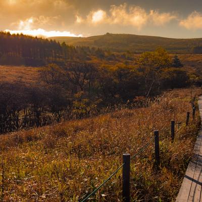 秋色の霧ヶ峰と遊歩道の写真