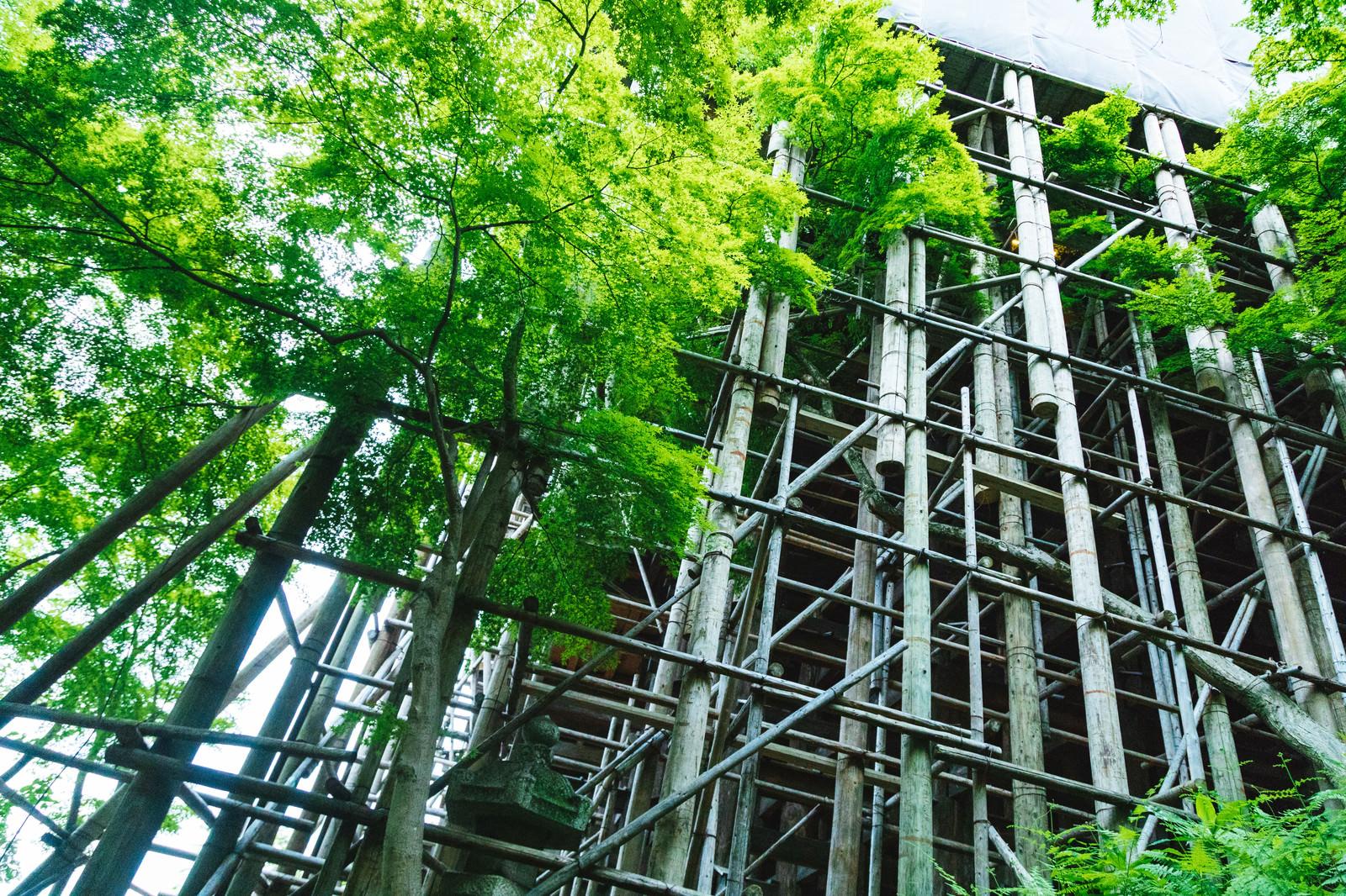 「平成の大改修で工事中の清水寺の足場平成の大改修で工事中の清水寺の足場」のフリー写真素材を拡大