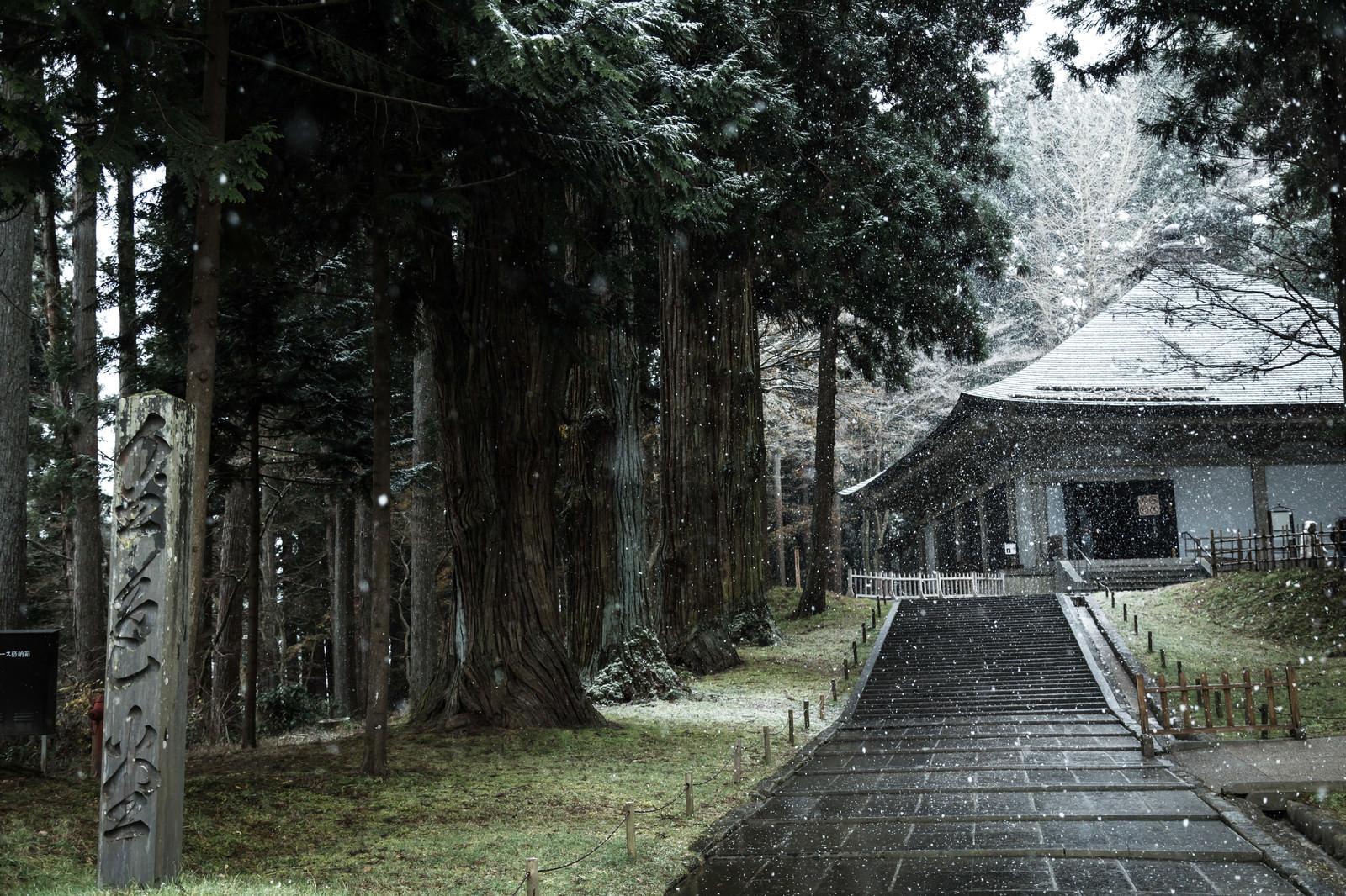 「雪に包まれる中尊寺金色堂前」の写真