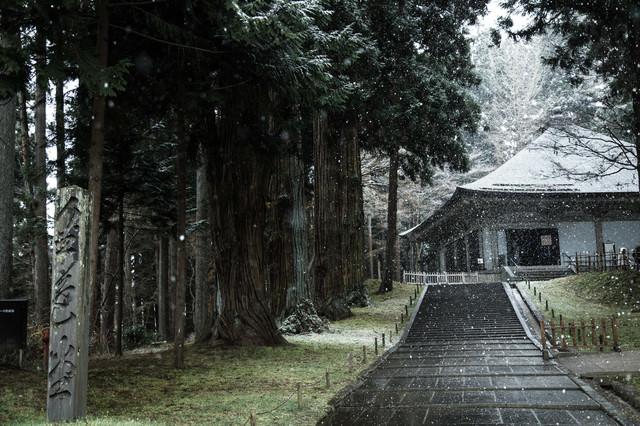 雪に包まれる中尊寺金色堂前の写真