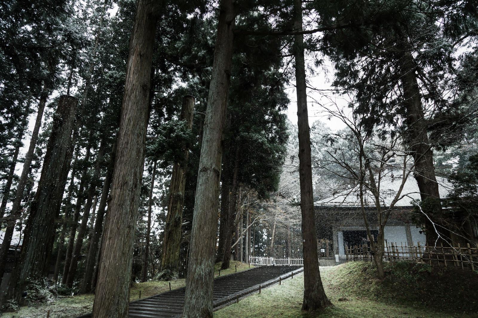 「雪が舞う中尊寺金色堂」の写真