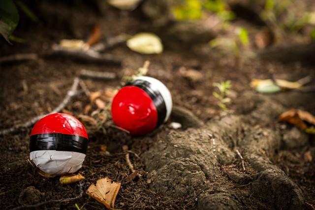 森の中に投げ捨てられた紅白ボールの写真
