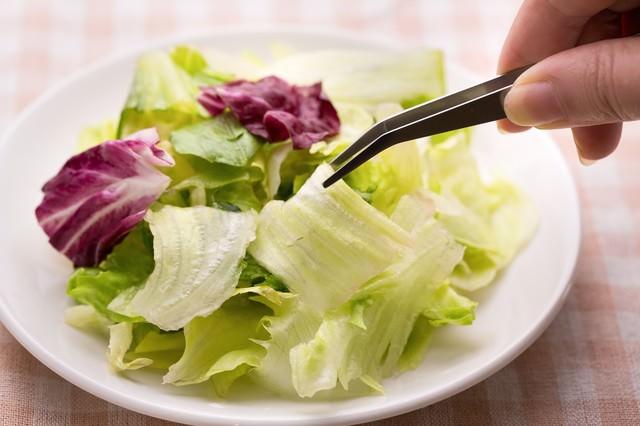サラダを撮影しようとピンセットでレタスの葉をつかむの写真