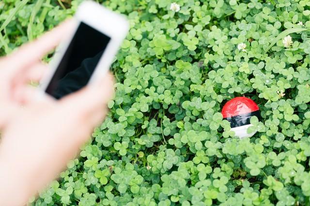 草むらに隠れている紅白ボールを発見の写真