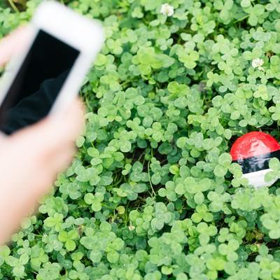 「草むらに隠れている紅白ボールを発見」の写真素材