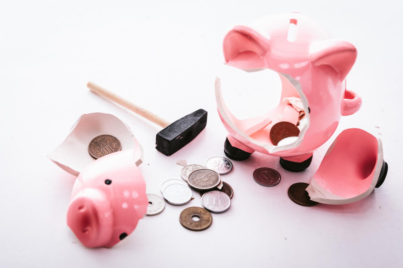 「豚の貯金箱に入っていたお金」の写真
