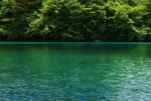 コバルトブルーの五色沼の写真
