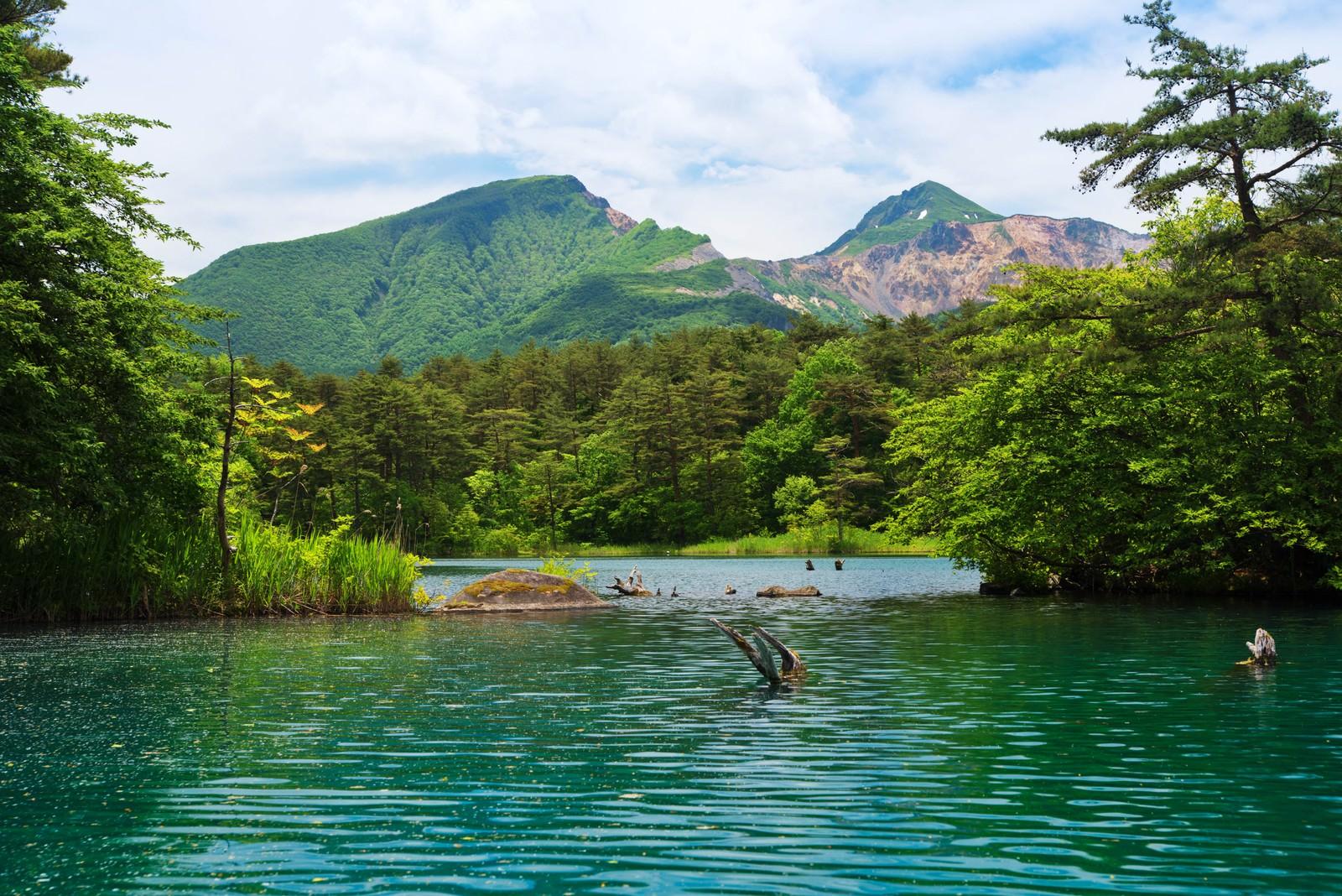 「五色沼と裏磐梯の風景」の写真