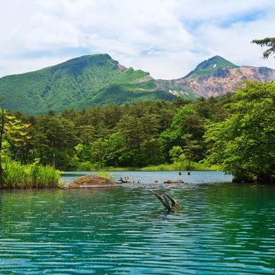 五色沼と裏磐梯の風景の写真