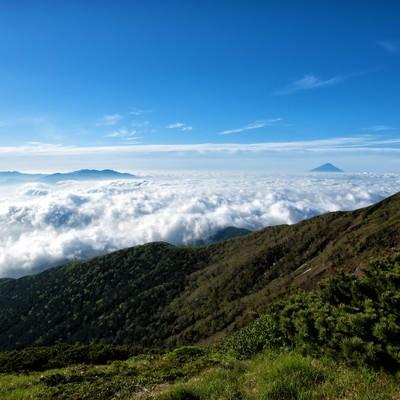 横岳から望む雲海の写真