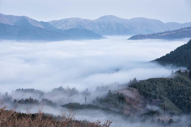 朝霧に包まれる元箱根の写真