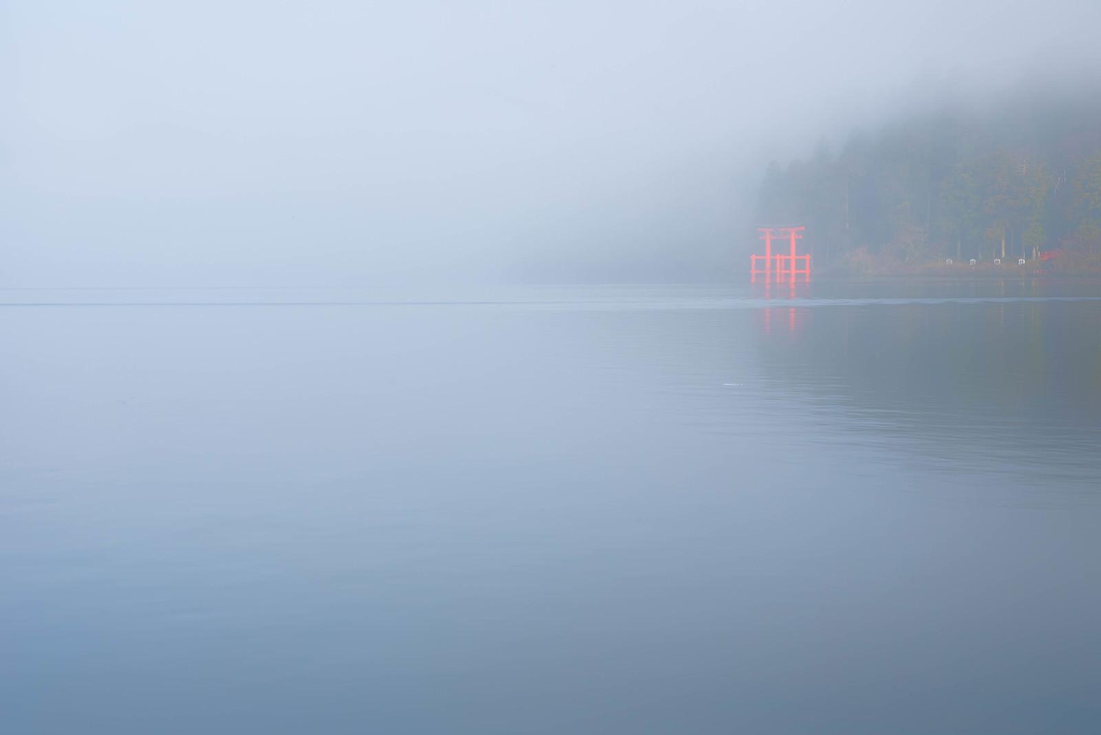 「霧から浮かび上がる箱根神社の鳥居」の写真