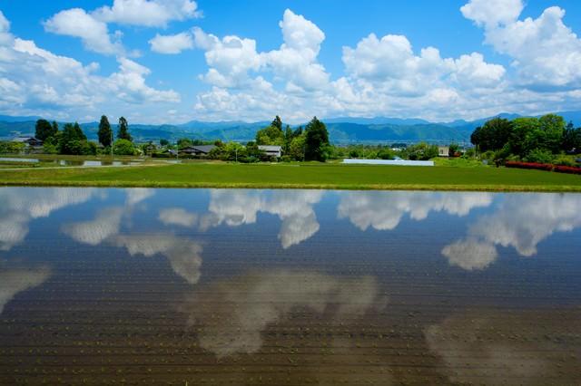 安曇野の水鏡の写真