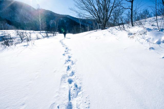 雪に残る足跡の写真
