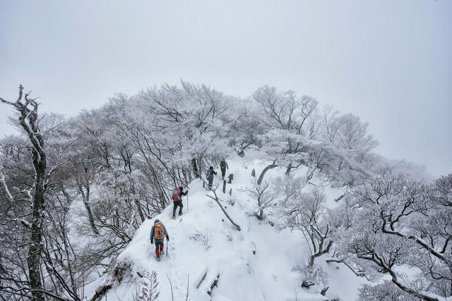 丹沢主稜線を進む登山パーティーの写真