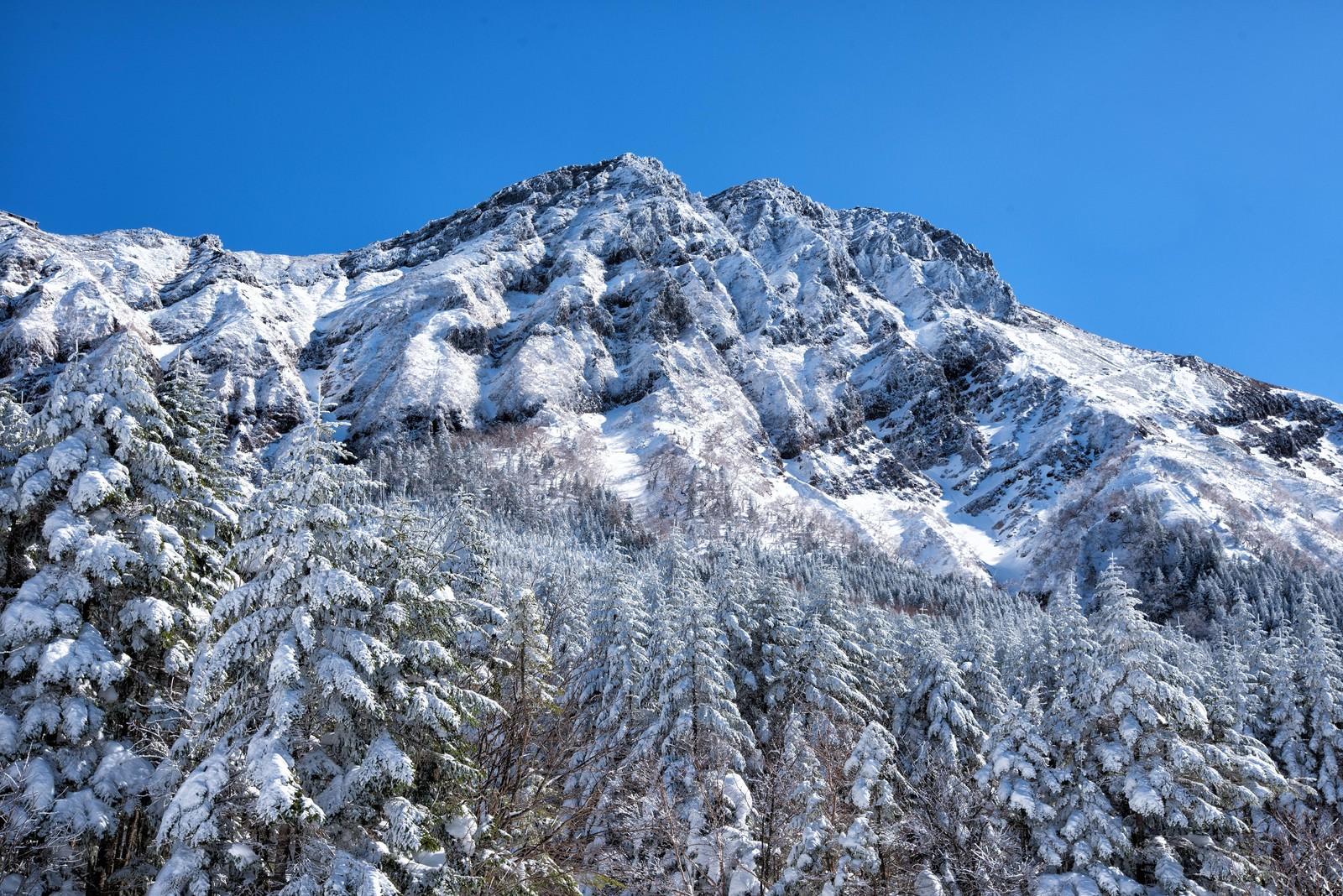 「凍り付く赤岳主稜」の写真