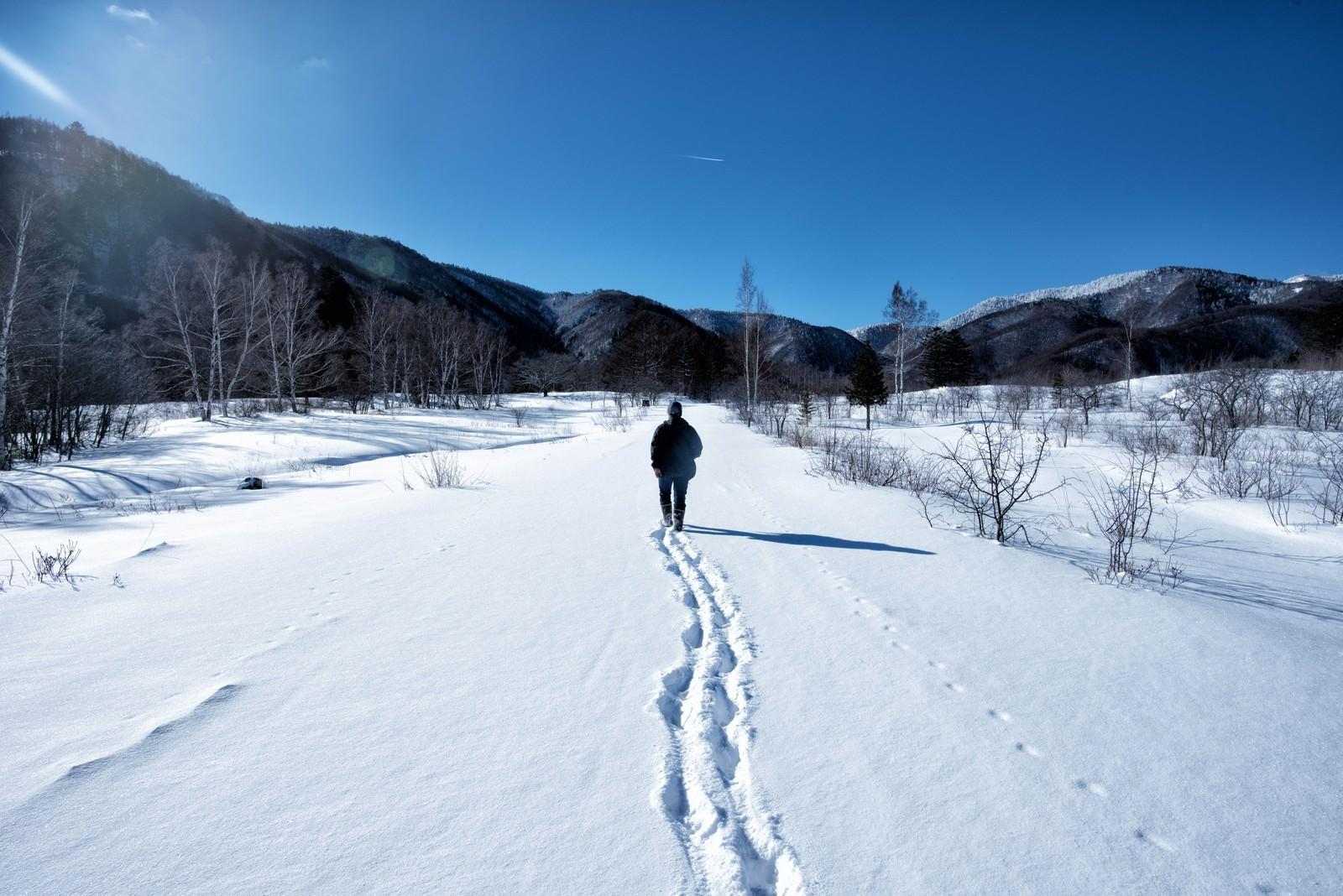 「新雪の雪原を歩く人」の写真