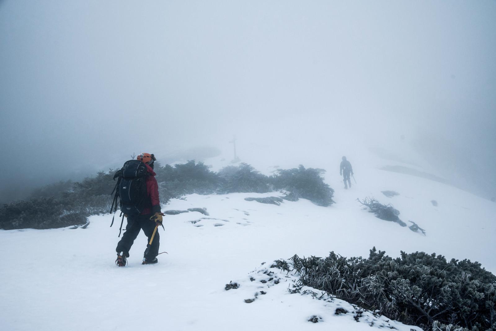 「ホワイトアウト発生時に山頂を目指す登山者」の写真