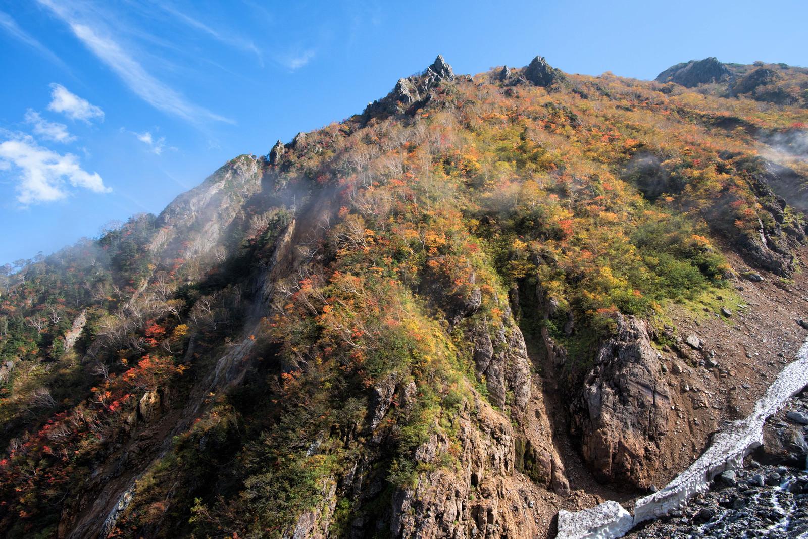 「紅葉に染まる秋の針ノ木谷」の写真