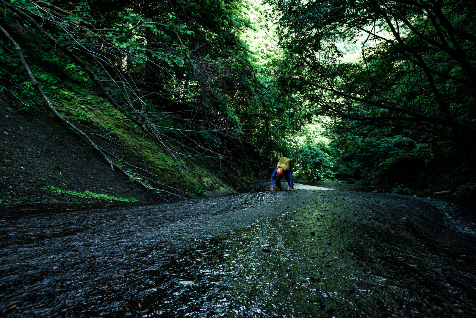 「沢登りに挑むクライマー(滑滝)」の写真