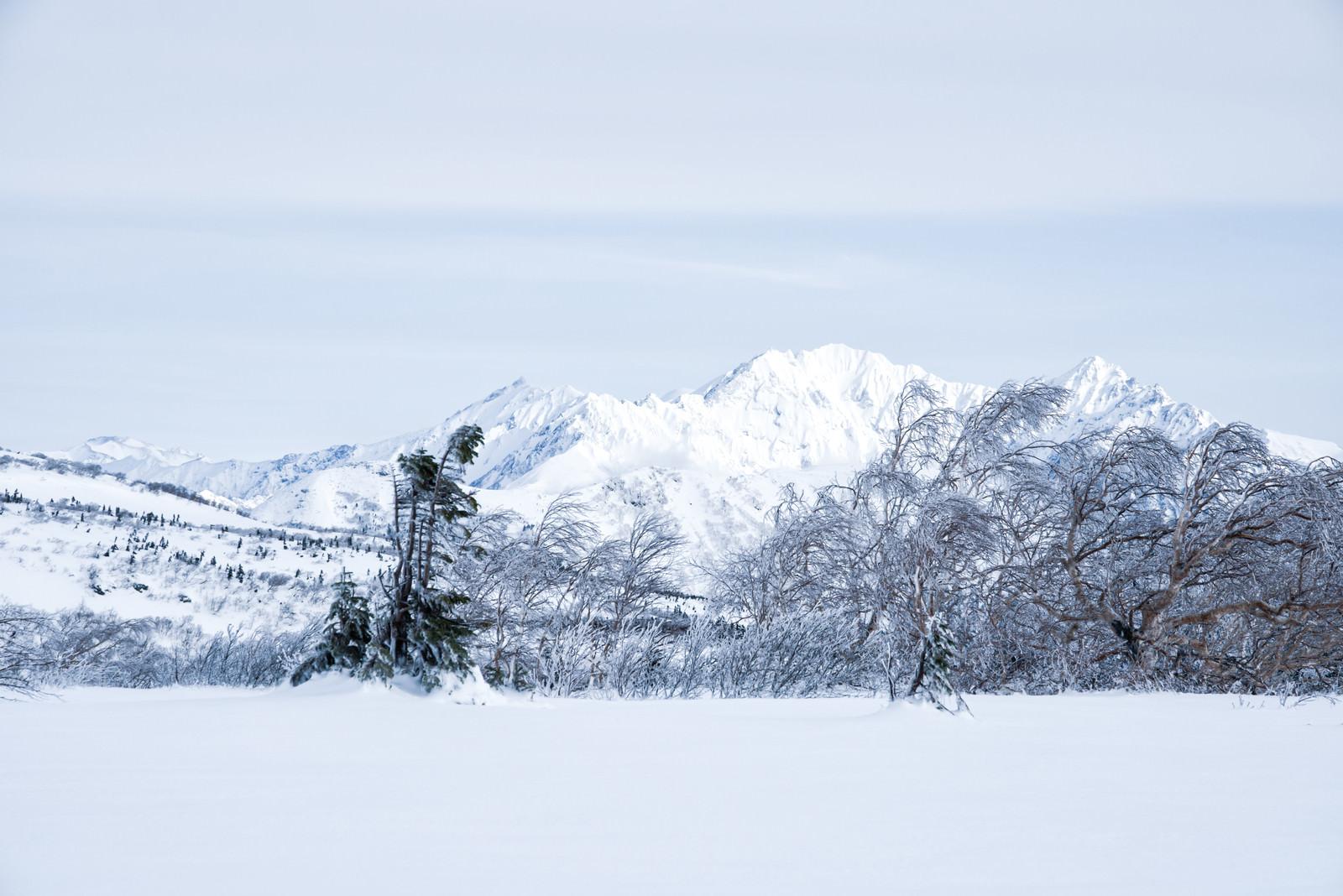 「雪化粧した穂高連峰の稜線(飛騨山脈南部)」の写真