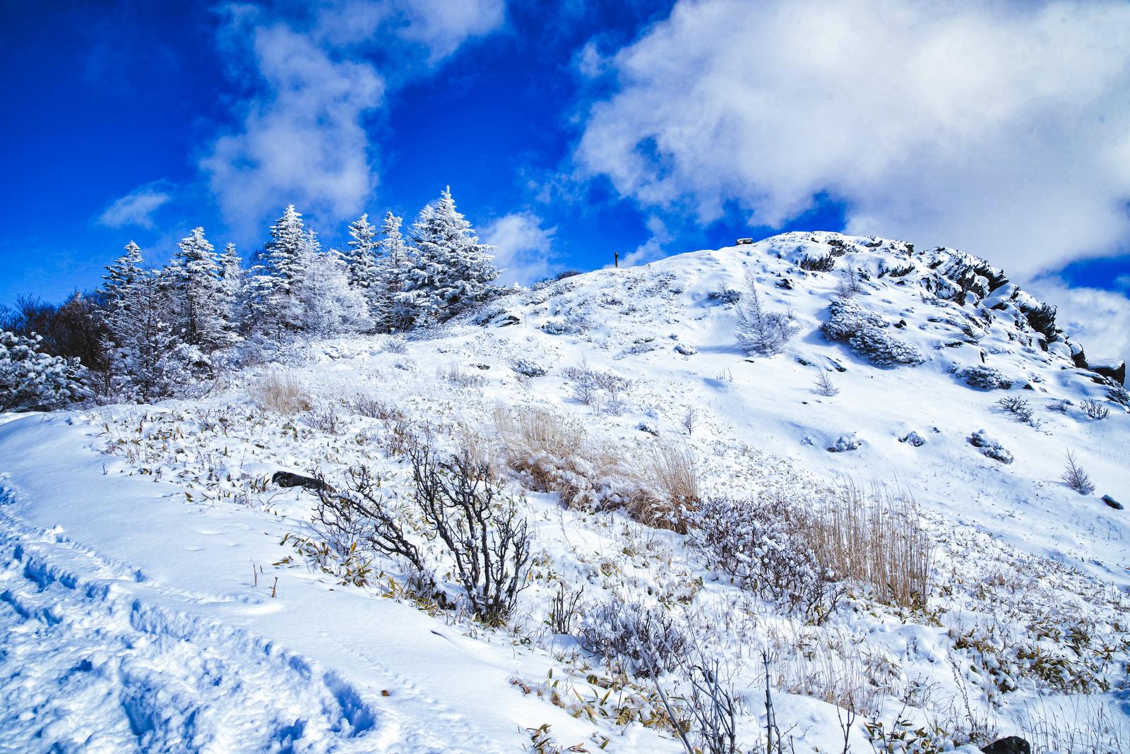 「雪に覆われた王ヶ鼻(北アルプス)」の写真