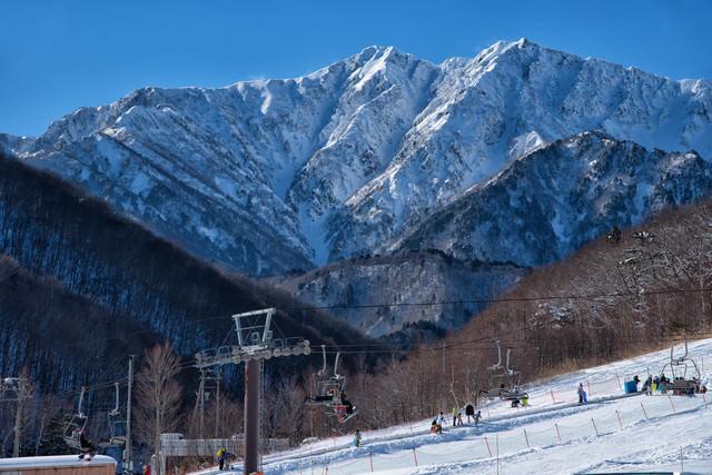スキー場越しの爺ヶ岳(北アルプス)の写真