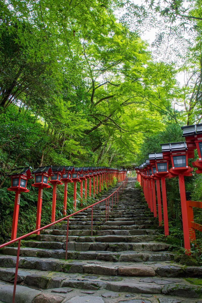 「雨上がりの早朝の貴船神社入り口の石段(京都)」の写真