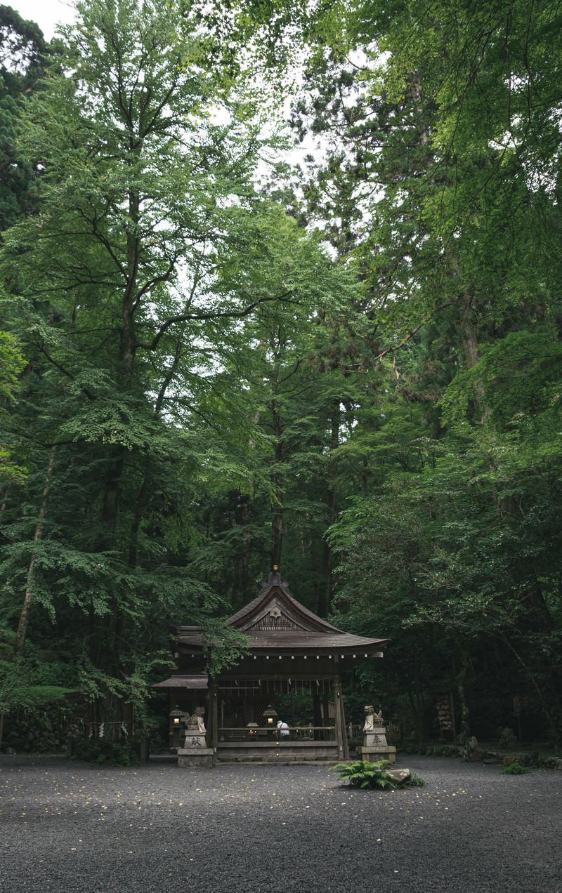 「大きな木に囲まれて建つ貴船神社奥宮(京都)」の写真