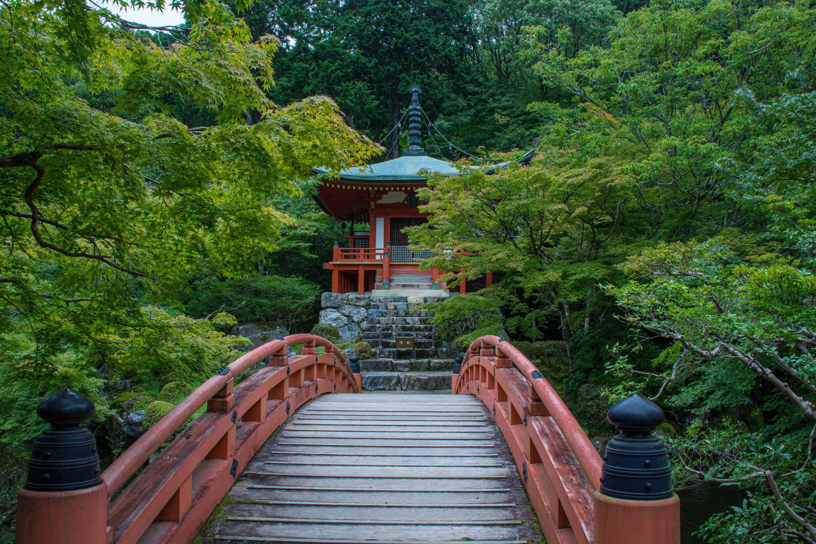 「橋の向こうに見える朱塗りのお堂(醍醐寺)」の写真