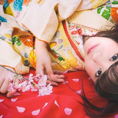 「桜散る毛氈に寝転がる振袖美女」の写真素材