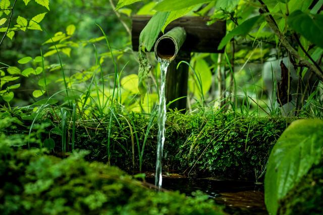 竹筒から流れる水の写真