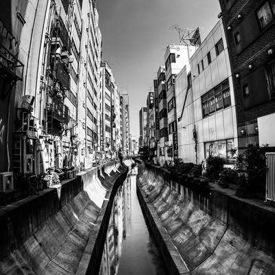 渋谷川(モノクロ)の写真