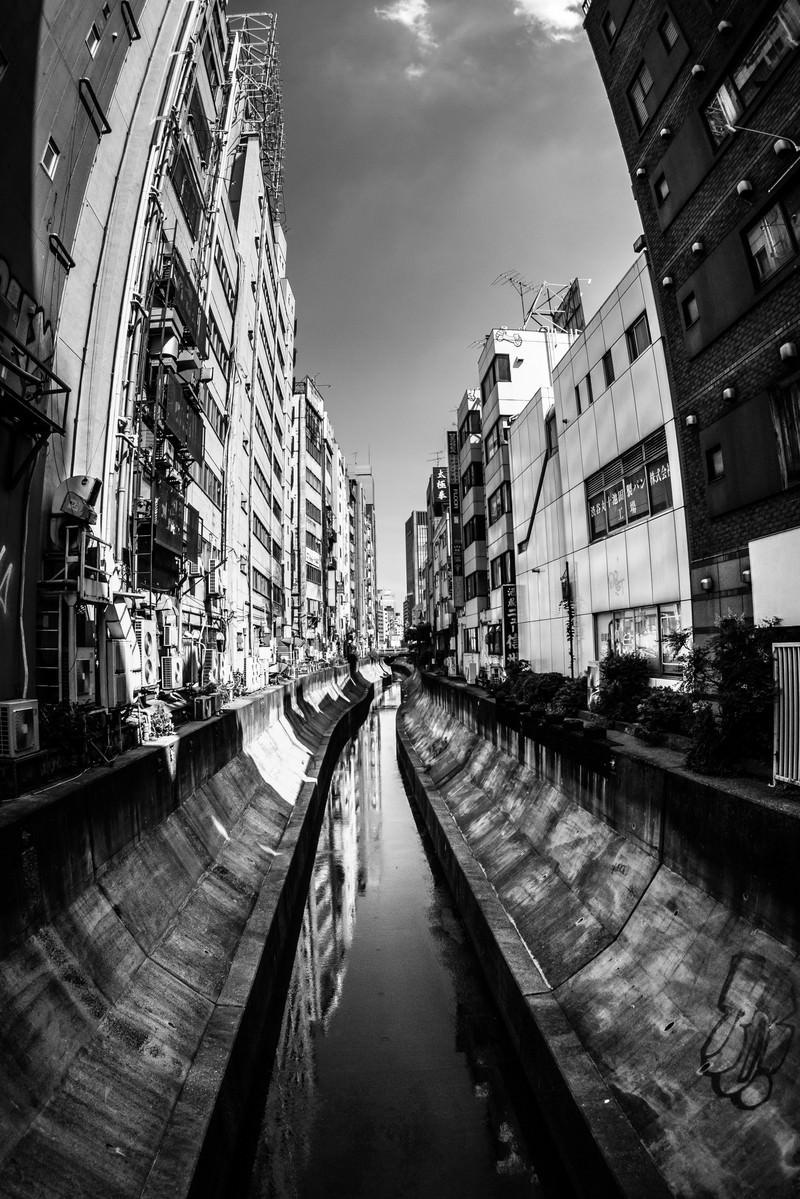 「渋谷川(モノクロ)」の写真