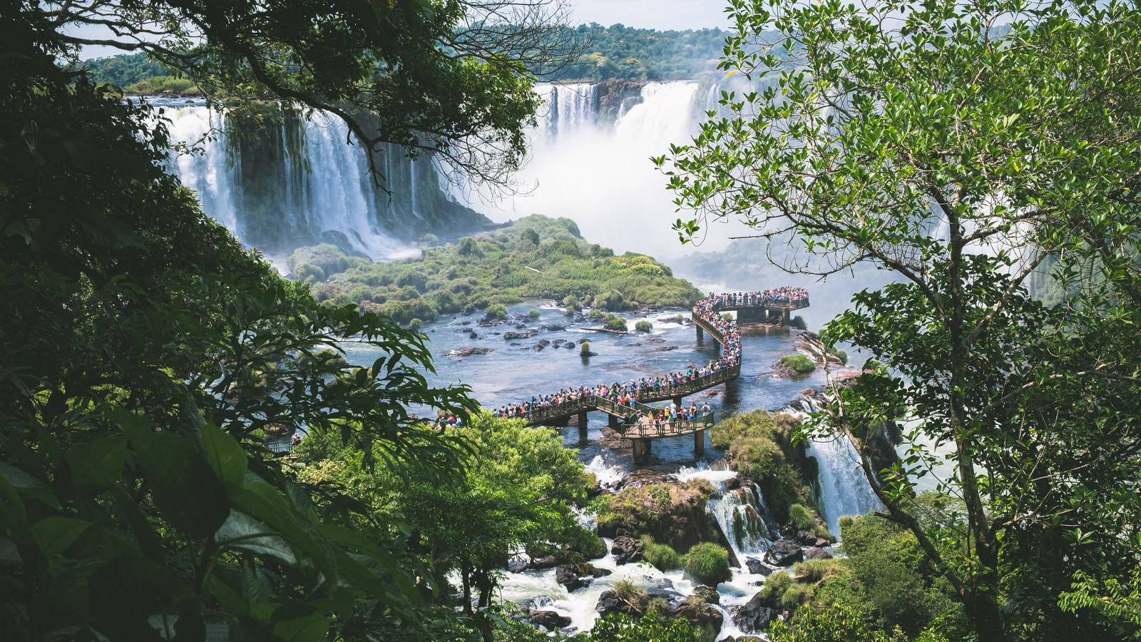 「木々の隙間から見た水上の遊歩道(イグアスの滝)」の写真