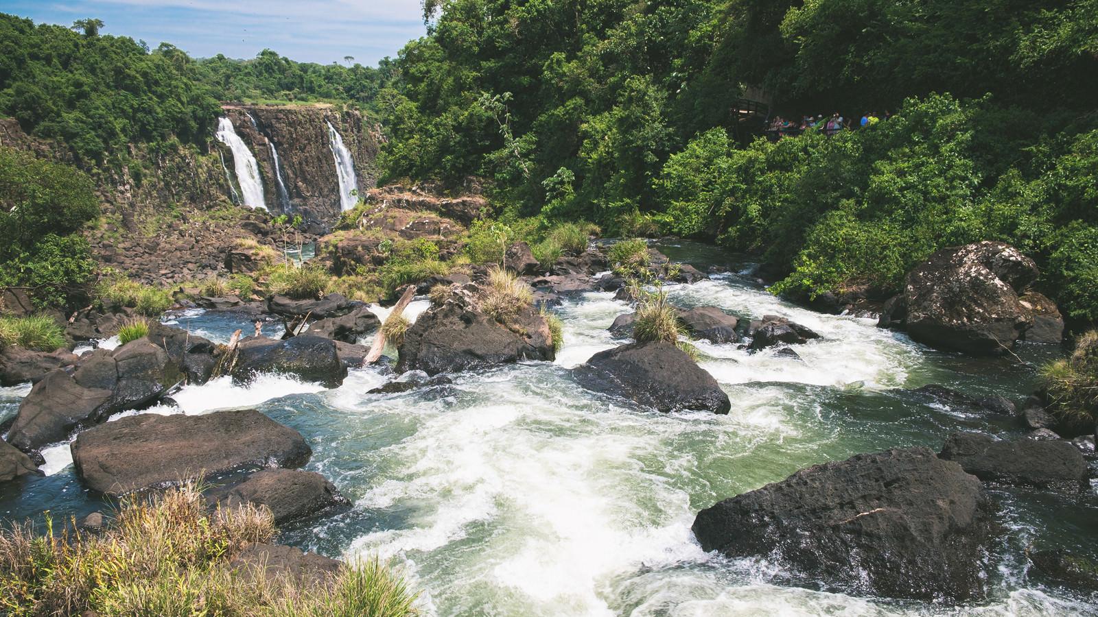イグアスの滝から流れる豊富な水量の川(南米大陸)のフリー素材