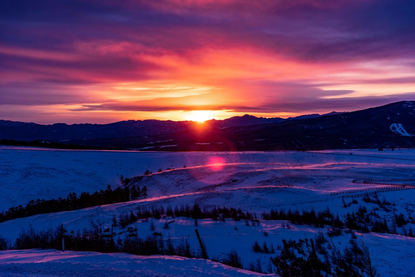 「沈む夕日と大雪原」の写真